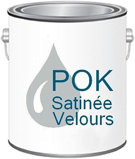 Peinture Acrylique Pour Murs Satin Lessivable Gris Perle Pok Satin 5 L Bac Offert