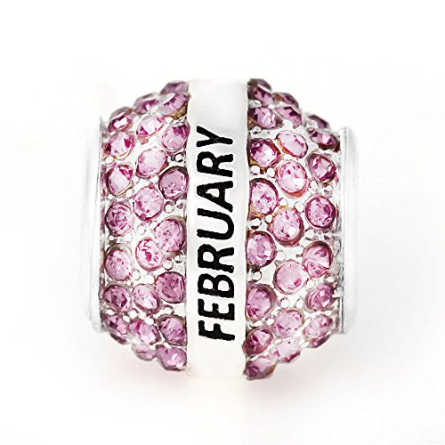 Birthday With Month Charms for Snake Chain Charm Bracelet (February ) - February Birthstone Charm