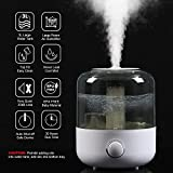 YJY Humidifiers with Essential Oils Diffuser, Top