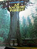 An Ancient Forest, Guy Spencer, 0816711682