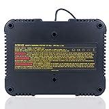 Lasica DCB102BP 20V Dual Port Charger for DEWALT