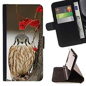 - winter berries snow bird hawk prey - - Prima caja de la PU billetera de cuero con ranuras para tarjetas, efectivo desmontable correa para l Funny HouseFOR LG G3