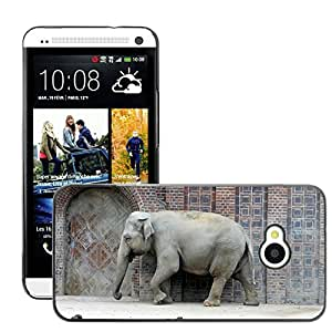 Hot Style Cell Phone PC Hard Case Cover // M00111968 Elephant Zoo Animal Pachyderm Grey // HTC One M7