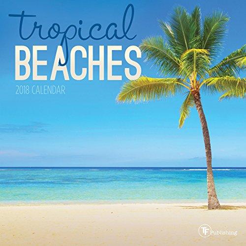 2018 Tropical Beaches Mini Calendar