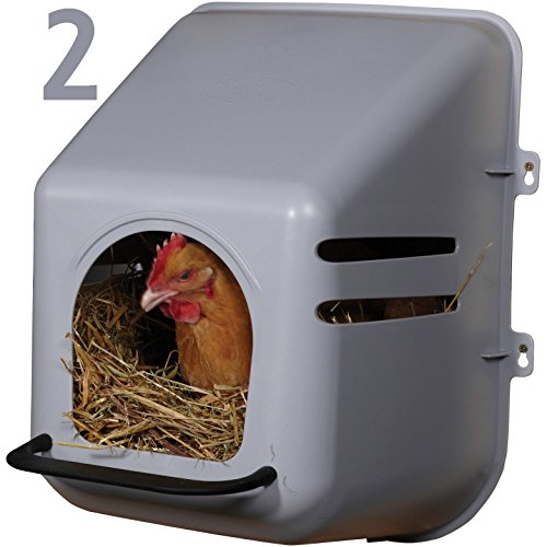 2 PACK OF LARGE WALL MOUNT EGG NESTING NEST BOXES WITH PERCH FOR CHICKEN COOP HEN HOUSE POULTRY