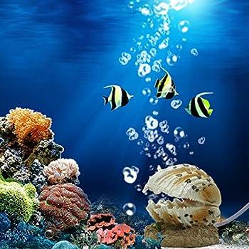 Amazon.com : WINOMO Aquarium Ornament Fish Tank Bubbling Shell Rock ...