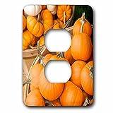 3dRose LSP_259427_6 USA, Massachusetts, Wareham, Pumpkins Plug Outlet Cover