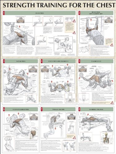 Strength Training for the Chest Poster: Frederic Delavier ...
