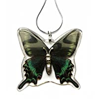 WGI Alpine Black Swallowtail Butterfly Necklace