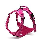 cloth harness dog - SGODA Dog Harness Nylon with 3M Reflective Dog Vest, Medium, Pink