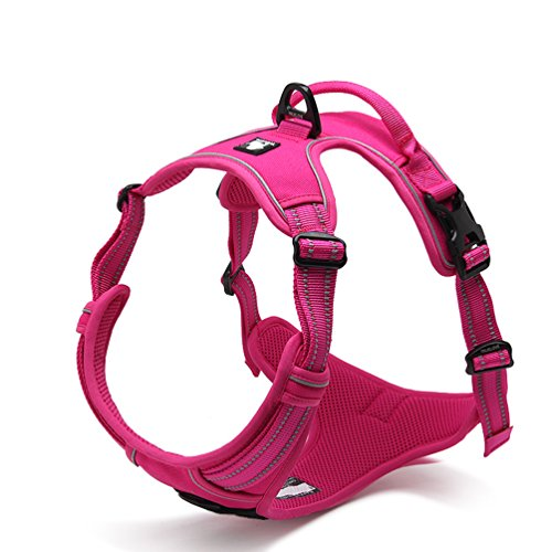 Dog Harness Front Range No Pull Harness with Handle Nylon with 3M Reflective Dog Vest,Medium,Pink