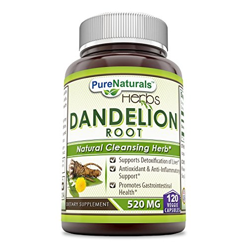 Pure Naturals Dandelion Root Dietary Supplement 520 Mg 120 Capsules- Supports Detoxification of Liver* Antioxidant & Anti-Inflammatory Support* Promotes Gastrointestinal Health* (Dandelion Large)