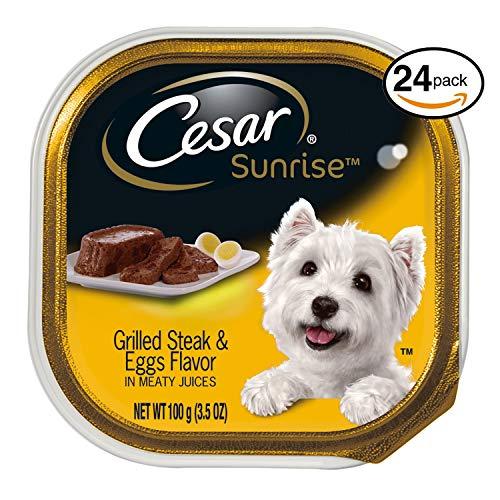 CESAR SUNRISE Wet Dog Food Grilled Steak and Eggs Flavor Breakfast, (Pack of 24) 3.5 oz. Trays