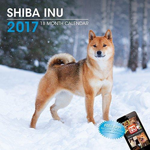 LittleGifts Shiba Inu 2017 Calendar (3066) ()