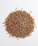 Manna Mills 100% Organic Hard Red Winter Wheat Berries - Bag N' Box 8 Lbs - U.S. Grown