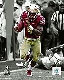 Dalvin Cook Florida State Seminoles NCAA Football Spotlight Action Photo (Size: 8'' x 10'')