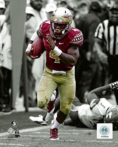 Size: 8 x 10 Dalvin Cook Florida State Seminoles NCAA Football Spotlight Action Photo
