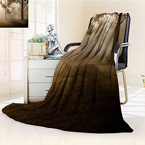Mirage Collection 1 Light - YOYI-HOME Luxury Collection Ultra Soft Plush A Gray Cloud Covered The Woods Like a Mirage Warm Microfiber All Season All-Season Throw/Bed Blanket/79 W by 59