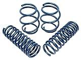 Dinan D100-0913 Coil Spring Lowering Kit