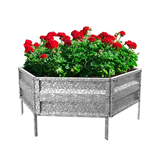 Pure Garden (PURNC) 50-193 Raised Garden Bed and Plant Holder Kit, 21'' L x 9.75'' W x 5.5'' H by Pure Garden (PURNC)
