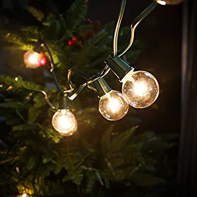 Set of 10 Glass ST40 Edison Style Bulb String Lights