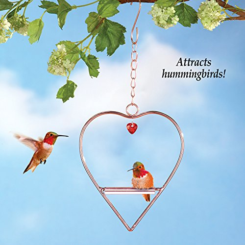 Hummingbird Heart-Shaped Swing