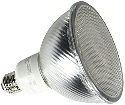 TCP PF3823 CFL PAR38 - 90 Watt Equivalent (23W) Soft White (2700K) PAR Flood Light Bulb