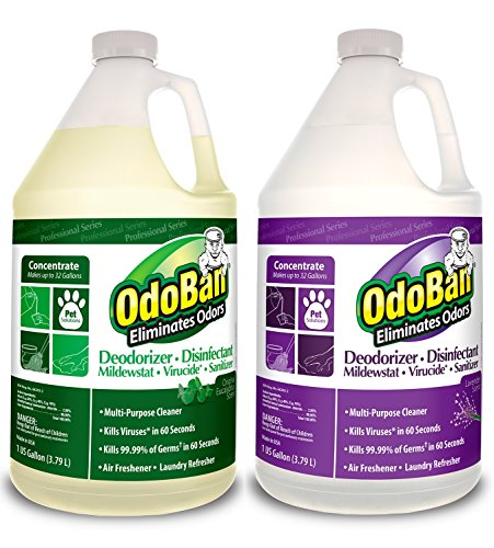 OdoBan Professional Cleaning and Odor Control Solutions, 1 Gal Each Original Eucalyptus and Lavender Scents
