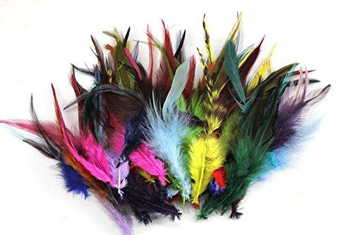 2 opinioni per 100 piume di gallo, piume colorate di collo di fagiano, 15–20 cm Multi-colored