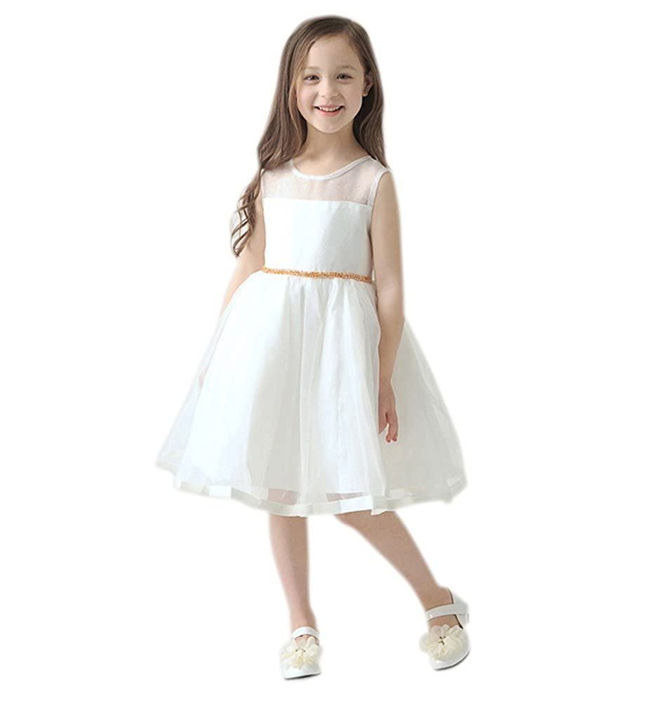 Amazon Aurora Bridal Princess Organza Girls Wedding Dress Birthday Clothing: Princess Aurora Wedding Dresses At Reisefeber.org