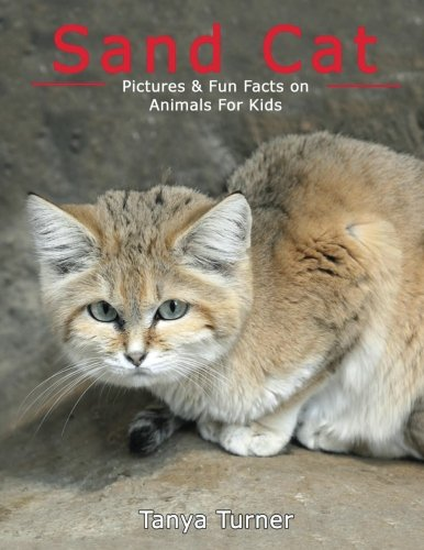 Sand Cat: Pictures & Fun Facts on Animals For Kids (Amazing Creature Series) (Volume 1)