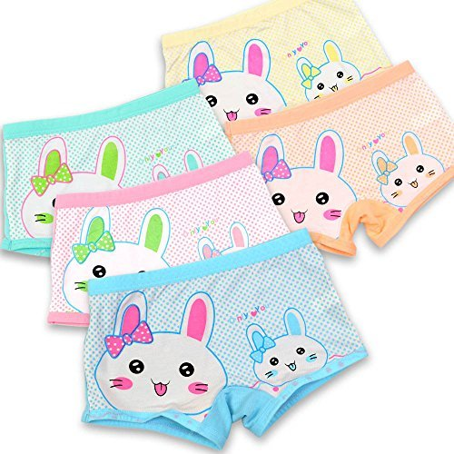 BOOPH Girls' Panties Rabbit Underwear Bunny Boyshort Hipster Kids Briefs 2-11 Years (Size 2t Underwear)