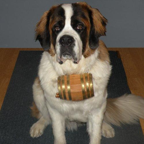 Saint Bernard Dog Collar Wood Barrel - 1 Liter - Black