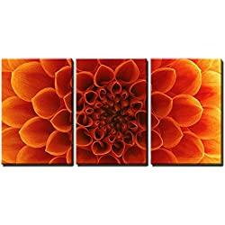 "wall26 - Abstract Flower Petals - Canvas Art Wall Decor - 16""x24""x3 Panels"