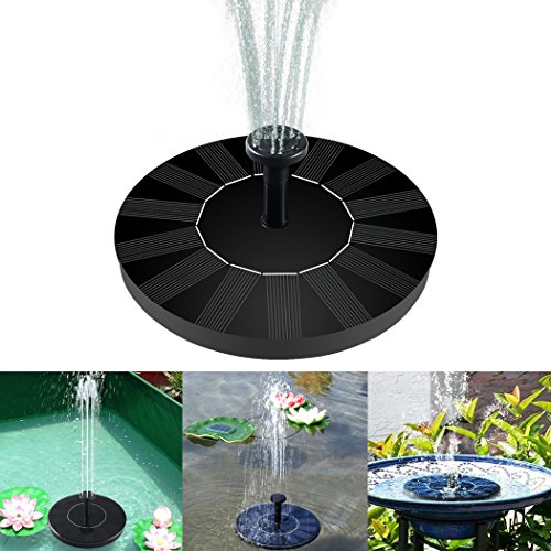 Bird Bath Solar Light in Florida - 1