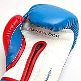 Everlast Men's Powerlock Hook/Loop Gloves, 16