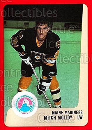 Mitch Molloy Amazoncom CI Mitch Molloy Hockey Card 198889 ProCards AHL 151