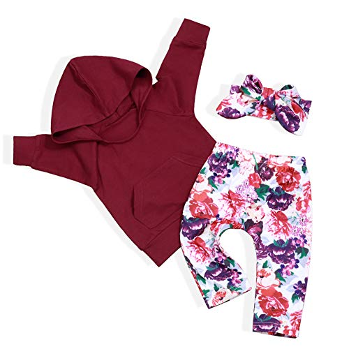 Infant Baby Girl Sweatshirt Long Sleeve Pocket Hoodie Floral Pants and Headband Toddler Clothes Set(6-12 Months)