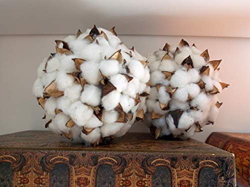 6'' Decorative Cotton Balls Bolls for Home Decor, Vase Bowl Filler, Planters, Trays, Lanterns, Weddings, Parties, Farmhouse Rustic Style Decoration, White/Brown, Handmade by Wreath and Vine, LLC