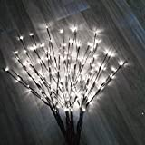 Foshin LED Branch Lights for Vases, Willow Branch Lights Indoor, Decorative Indoor Lights for