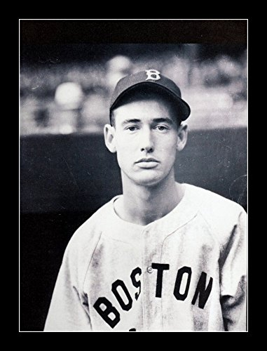 8 x 10 All Wood Framed Photo Ted Williams