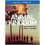 Animal Kingdom: The Complete First Season (BD) [Blu-ray]