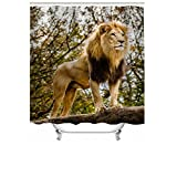 "Cheerhunting Animal Shower Curtain, Lion King Standing in The Jungle, Nature Art Work, Shower Curtain with Hooks for Bathroom, 72""W x 72""H Waterproof Fabric Bathroom Décor"