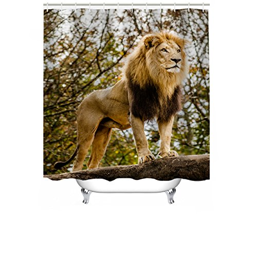 """Cheerhunting Animal Shower Curtain, Lion King Standing in The Jungle, Nature Art Work, Shower Curtain with Hooks for Bathroom, 72""""W x 72""""H Waterproof Fabric Bathroom Décor by Cheerhunting"""