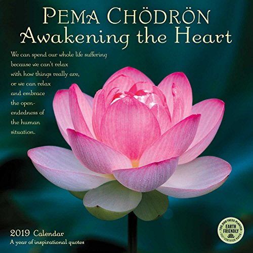 Pema Chodron 2019 Wall Calendar: Awakening the