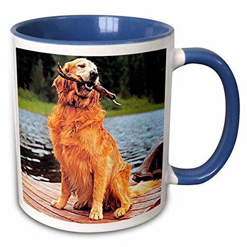 3dRose mug_245_6