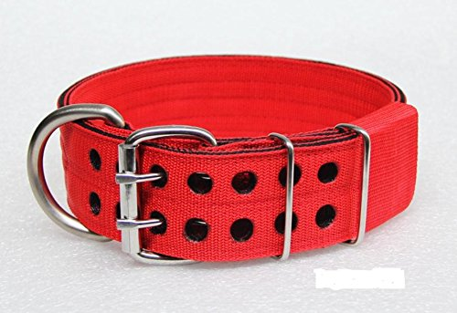"2 Inch. Dog Collars Pitbull Bully Pet Supplies 2""double- Ply Nylon and Stainless Steel #Color : Red with Black # Standard Large Dog"