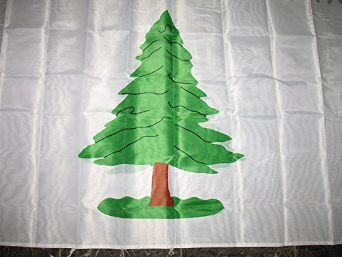 3x5 Washington Cruisers An Appeal to Heaven Double Sided polyester 2ply Flag 3'x5' Banner with brass grommets