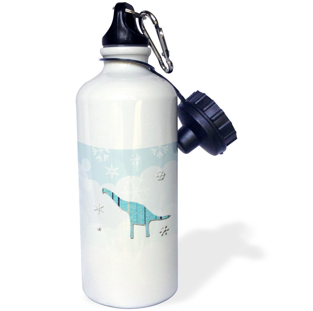 21oz Multicolor wb/_167352/_1 Aqua-Sports Water Bottle 21 oz 3dRose Apatosaurus Dinosaur and Snowflakes