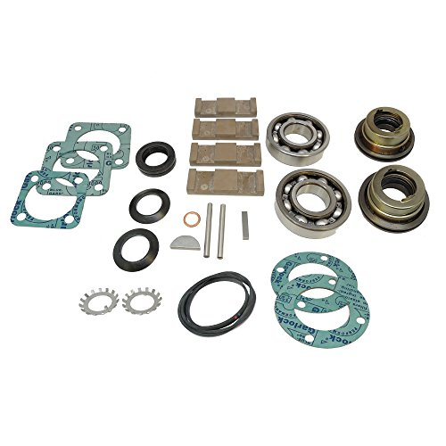 Blackmer 898950 Stainless Steel and Synthetic Main Kit TXD2A by Blackmer
